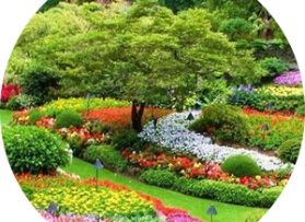 Jasa Landscape Taman